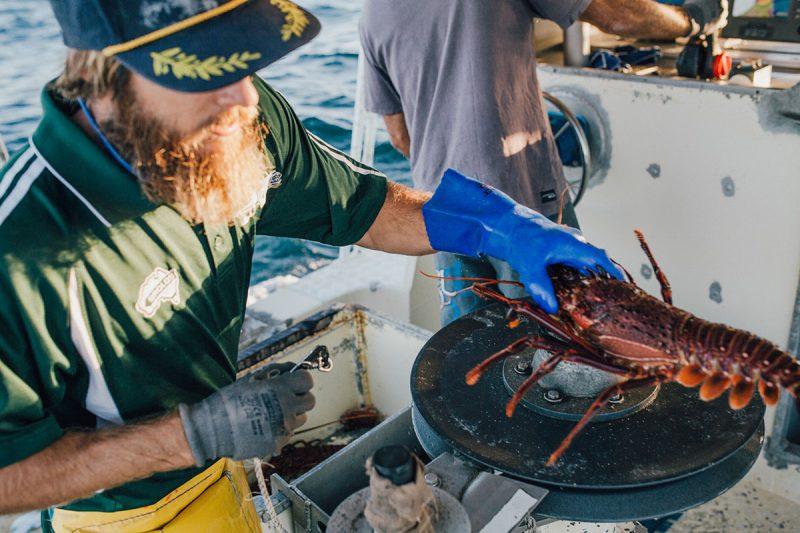 Geraldton Fishermen's Coop